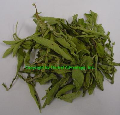 Super Sweet Stevia Leaf - Whole